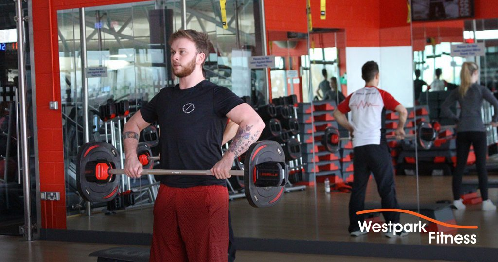 grip and forearm builder westpark fitness