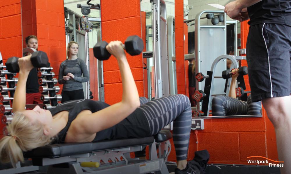 dumbbell chest press westpark fitness
