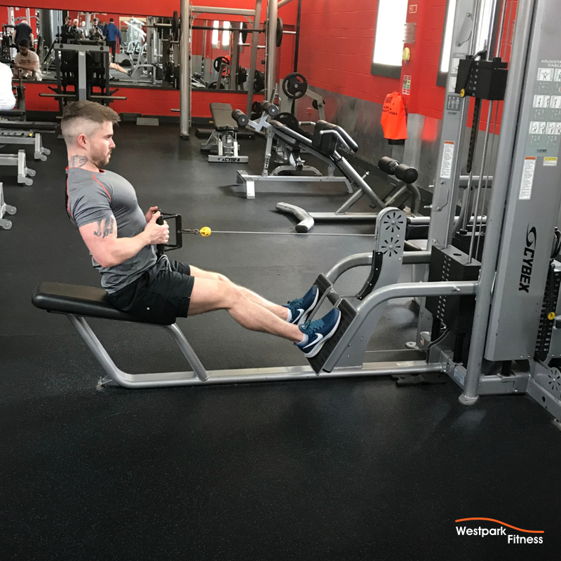 seated back row exercise at westpark fitness male gym goer sitting at machine with arms pulled back to his waist gripping the handle of a cable pulley machine with both hands