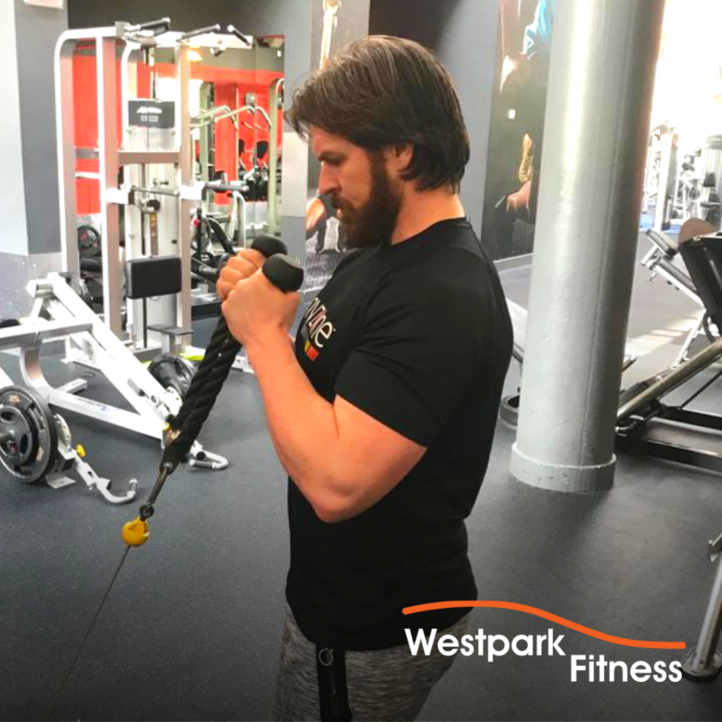 bicep cable curl exercise of the week westpark fitness tallaght dublin 24