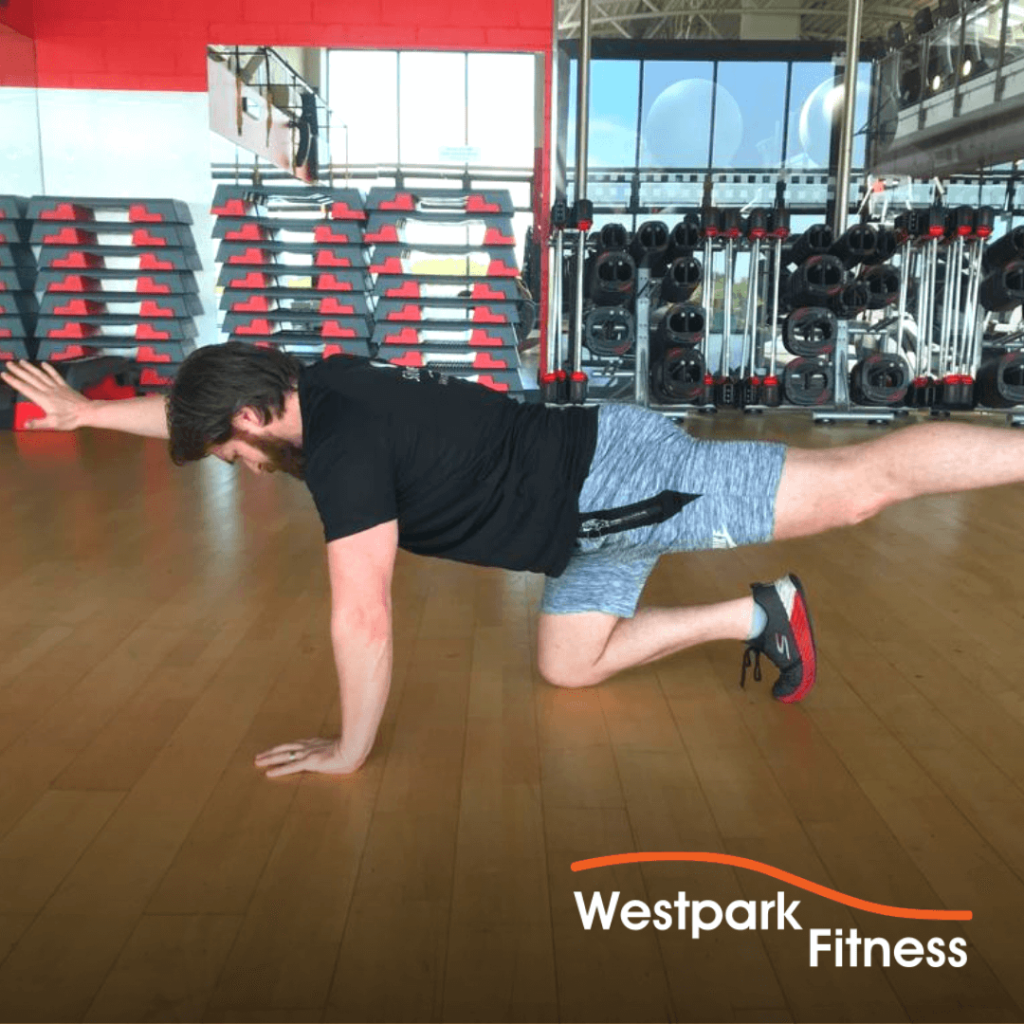 four-point kneeling westpark fitness exercise of the week